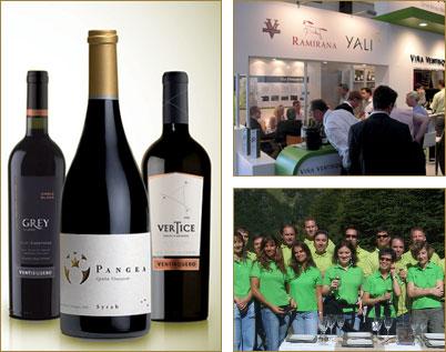 Viña Ventisquero premium wine